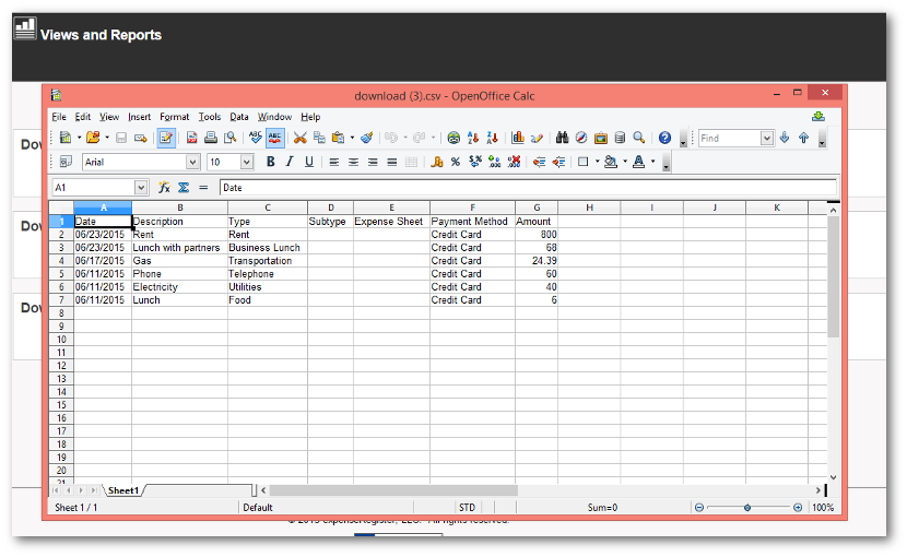 Expenses in a Spreadsheet